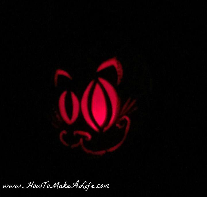 cat-jack-o-lantern
