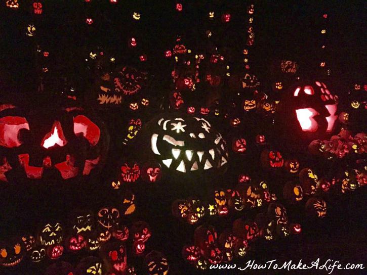 louisvilles-jack-o-lantern